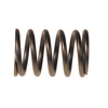 E-Z-GO RXV Valve Spring (Fits 2008-Up)